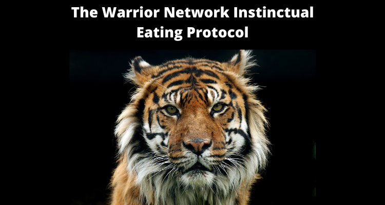 The Warrior Network Instinctual Eating Protocol